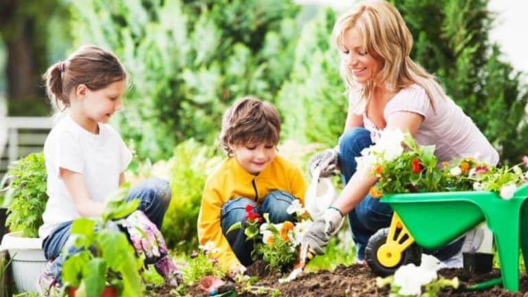 Why It's Vital For Moms To Have Hobbies