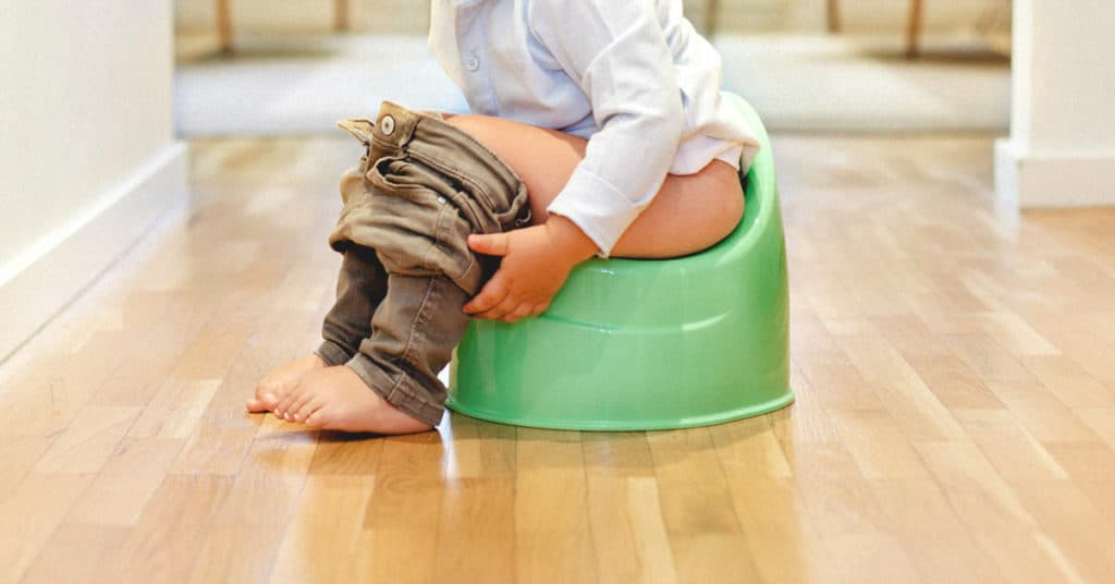 Tips For Successful Potty Training (Part 4)